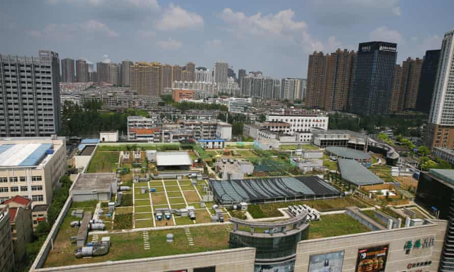 The rooftop garden of a shopping mall in Hefei city, Anhui, China.