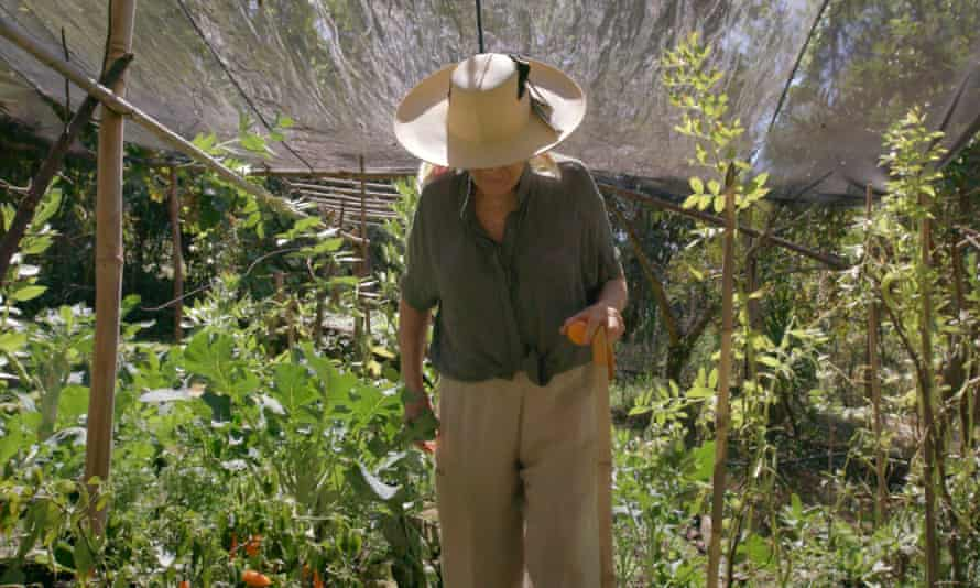 'Get some texture into your food': gathering produce from her garden.