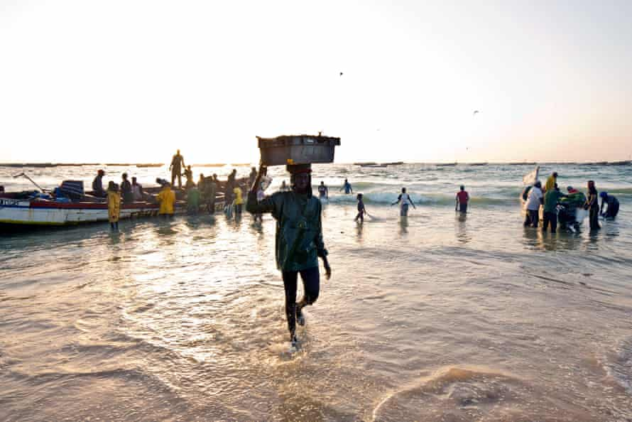 Fishermen head inland with their catch in Nouakchott, the capital of Mauritania.