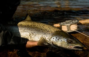 Angler holding an Atlantic salmon caught in the rapids on St. Mary's River.