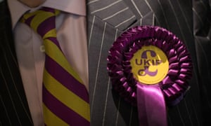 A delegate wears a rosette at Ukip's annual party conference in Birmingham