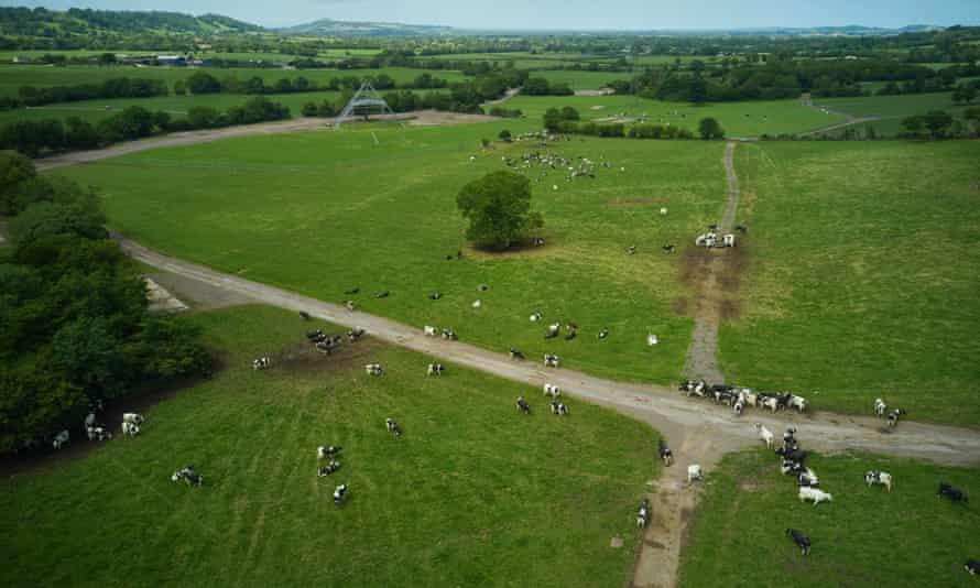 Worthy Farm in June 2020.