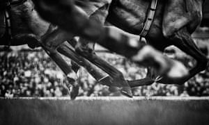 More than 200 horses suffered fatal injuries on British racecourses last year but such incidents are still exceedingly rare.