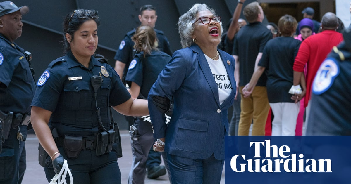 Joyce Beatty arrested during voting rights protest at US Capitol – video