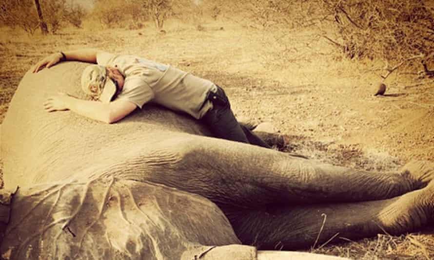 Prince Harry and an elephant