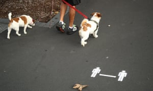 two dogs being walked next to a physical distancing sign