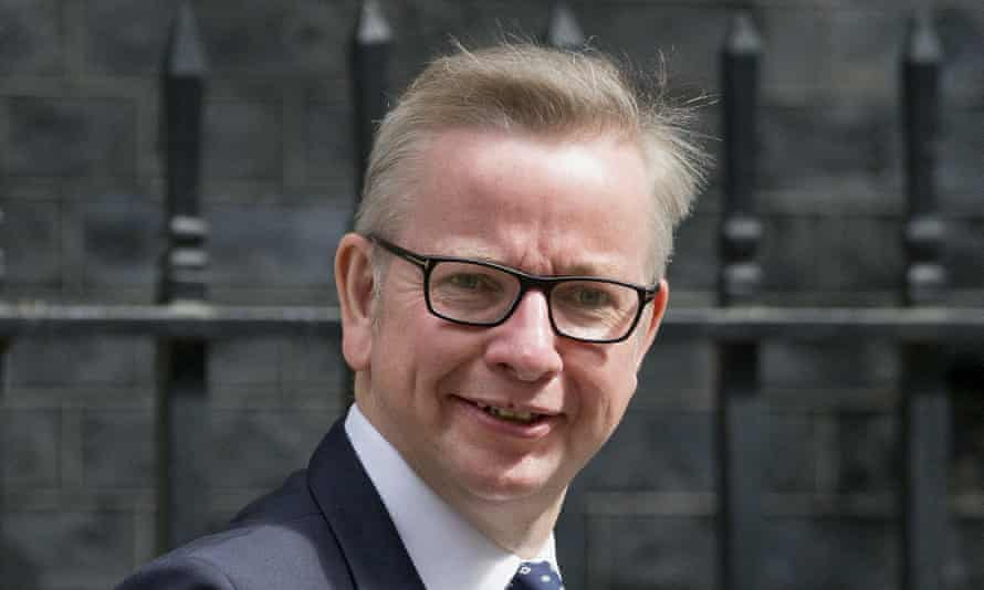Former justice secretary Michael Gove, who championed problem-solving courts after a visit to Texas last year.