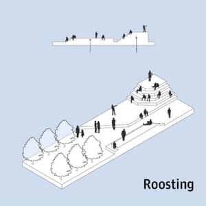 Roosting