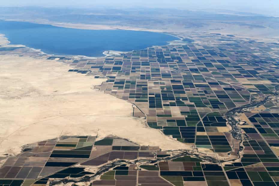 Agricultural farm land near the Salton Sea in California's Imperial County.