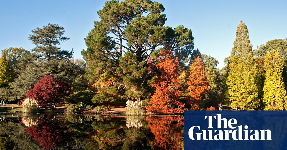 Britain's 10 most glorious autumn gardens, as chosen by readers