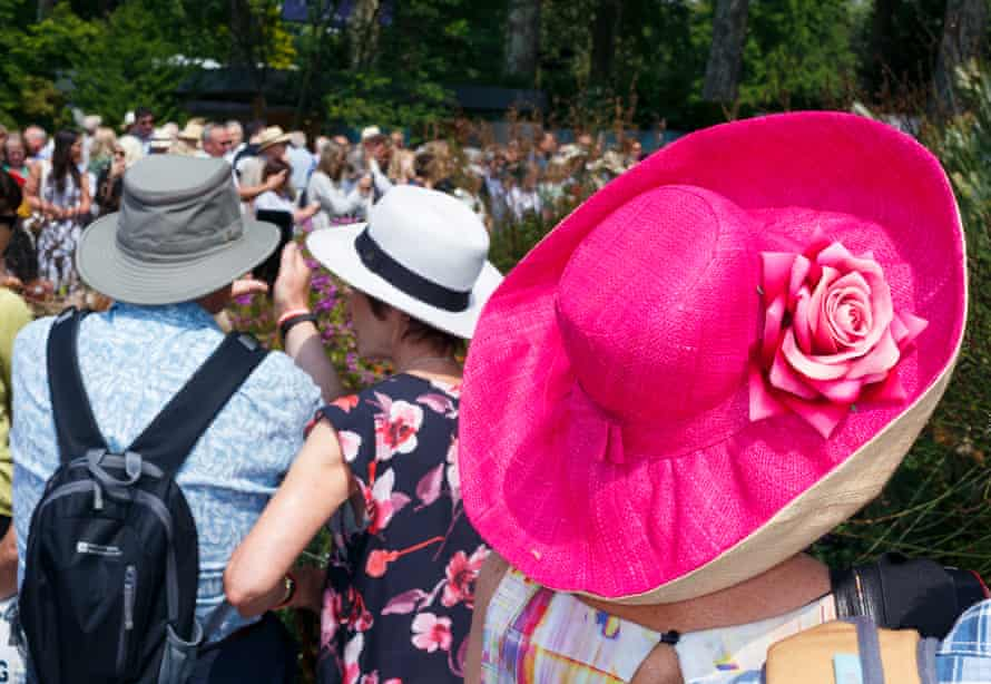 A vibrant pink hat