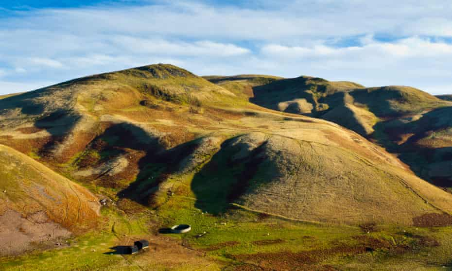 View of Lamb Hill in the Cheviot Hills, part of the Northumberland national park. UK.