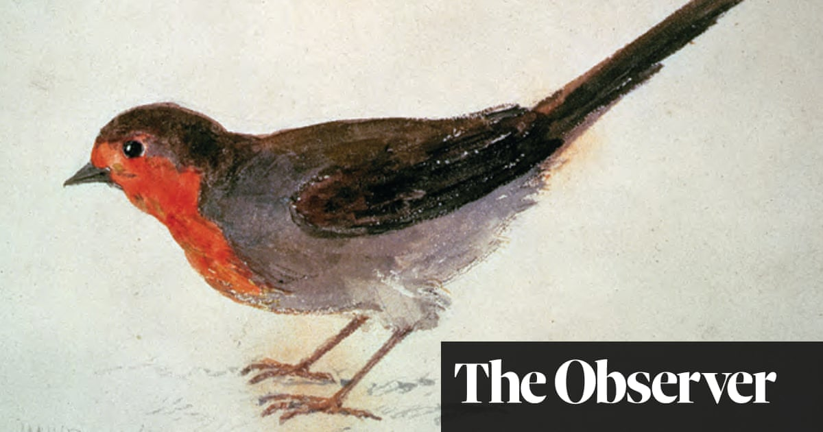 8e8a3af157033 The Robin: A Biography by Stephen Moss review – red in tweet and claw