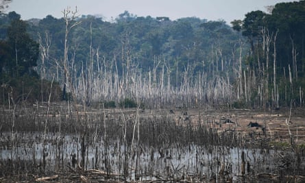 A cleared area of forest in the Amazon basin in Brazil.