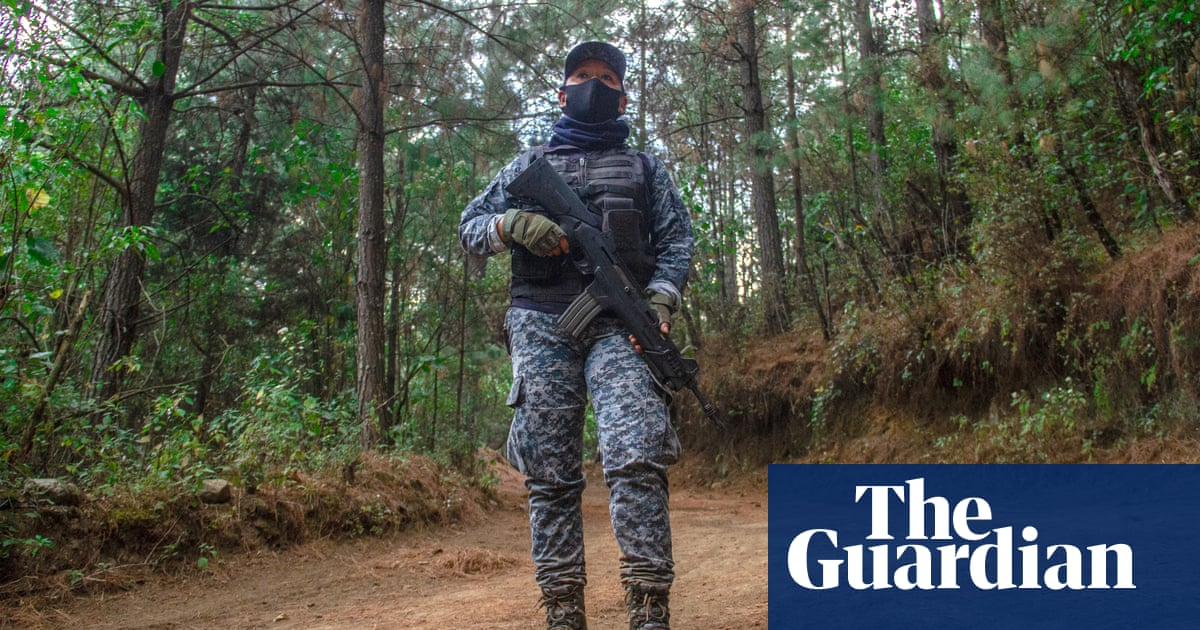 The Mexican women who kicked out the cartels – video