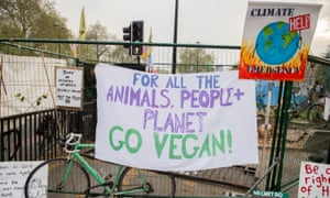 Extinction Rebellion signs at a protest at Marble Arch in April