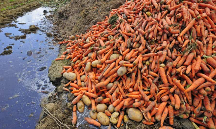 A pile of carrots and potatoes