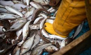 North Sea fisherman
