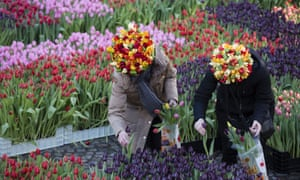Flower enthusiasts celebrate National Tulip Day near the Royal Palace in Dam Square, Amsterdam.