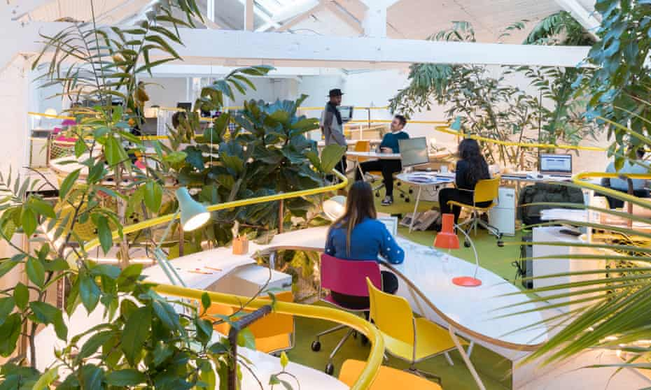 Like a garden centre created by Barbarella … Second Home's new workspace in Holland Park, London.