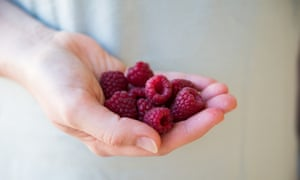 Raspberries must be transported in a single layer and kept cool.