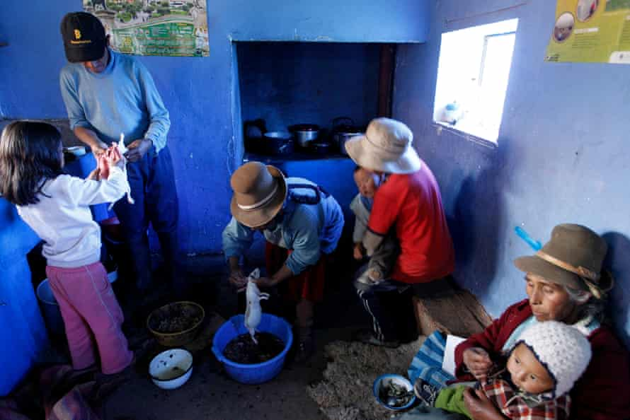 Octavia Ccahuata cooks in her kitchen, which is fitted with equipment that saves energy and reduce smoke emission as part of the 'Hot Clean House' project.