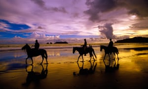 Horses amble at the edge of the Pacific ocean, Manuel Antonio, Costa Rica
