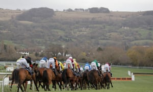 The horses make their way out onto the back straight at Cheltenham.