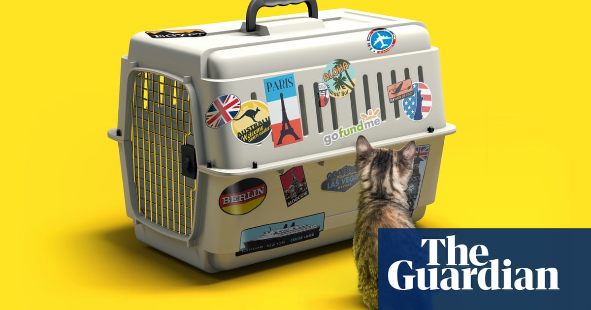 Got a grand for my cat's gap year? The unstoppable rise of