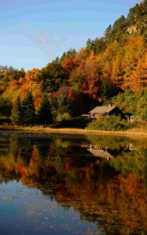 Autumn trees near Dunkeld, Scotland.