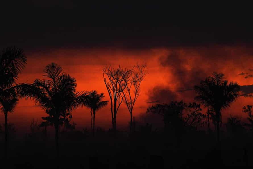 Smoke rises from an illegal fire in Amazon rainforest reserve, north of Sinop in Mato Grosso state, August 11.