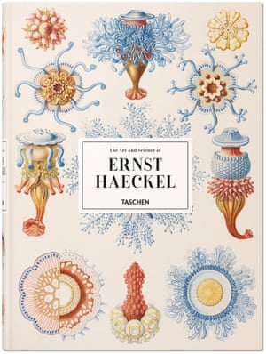 The Art and Science of Ernst Haeckel Rainer Willmann, Julia Voss Hardcover, 28.5 x 39.5 cm, 704 pages
