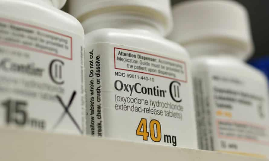 Purdue Pharma, which makes OxyContin, made the largest donations to groups that advocate for people suffering from chronic pain.