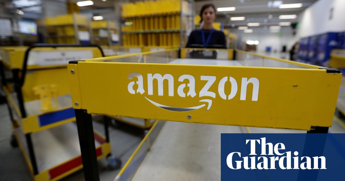 Top Amazon Boss Privately Advised US Government on Web Portal Worth Billions to Tech Firm
