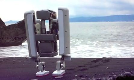 alphabet's schaft robot