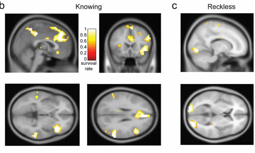 Scans from mock crime experiments show how neurons fire up in different areas of brain in people committing crimes knowingly and those who break the law by being reckless.