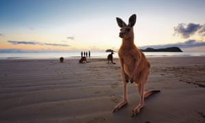 48 hours in Mackay, north Queensland – where to go, what to