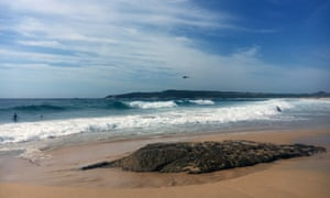Police and surf lifesavers search the waters off Maroubra beach in Sydney for missing 14-year-old boy Tui Gallaher.