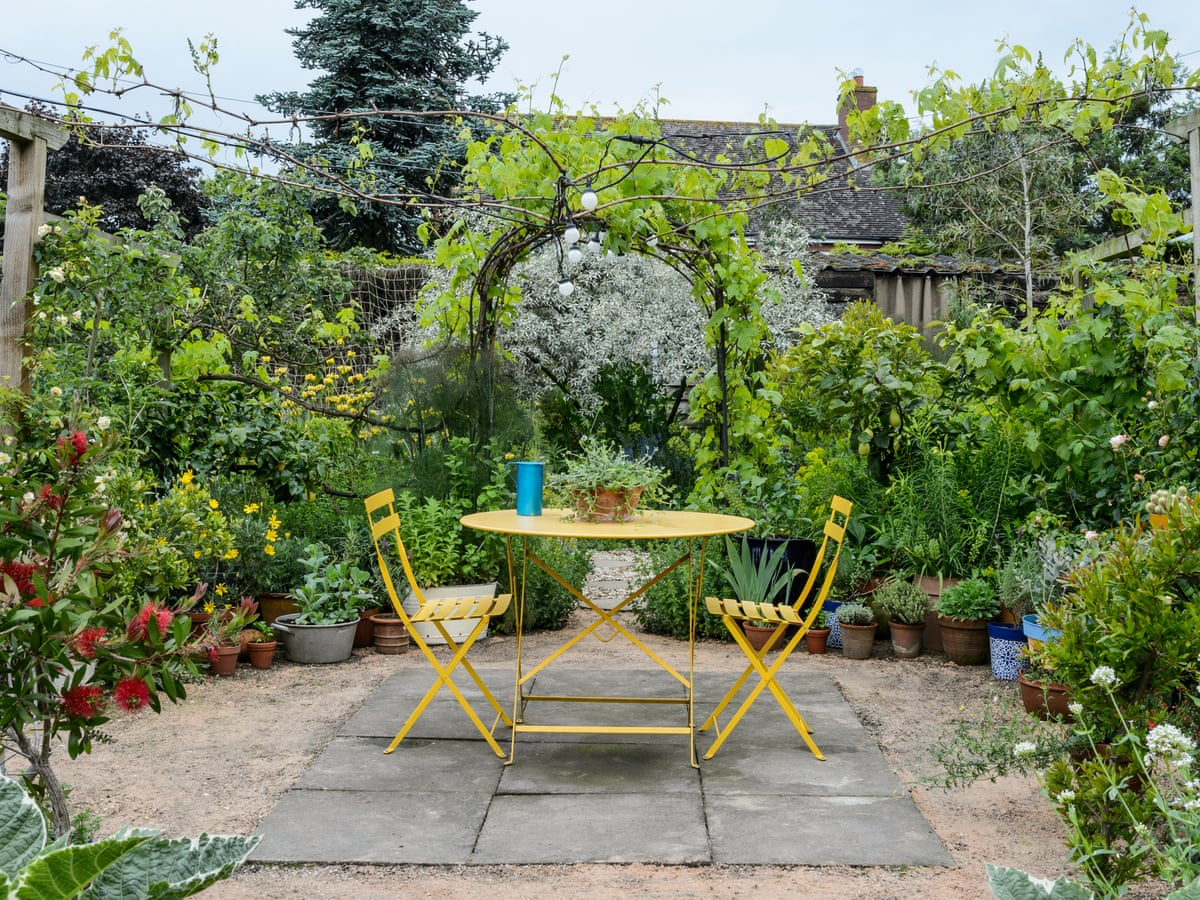 Keep Off The Grass Five Alternatives To A Lawn Gardens The Guardian