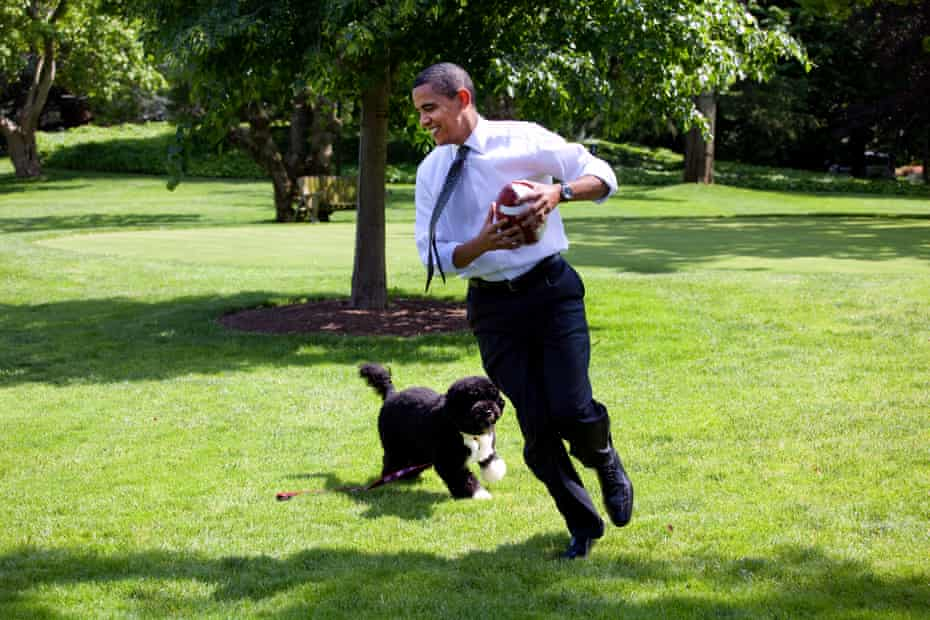Obama and his dog Bo on the South Lawn of the White House in 2009.