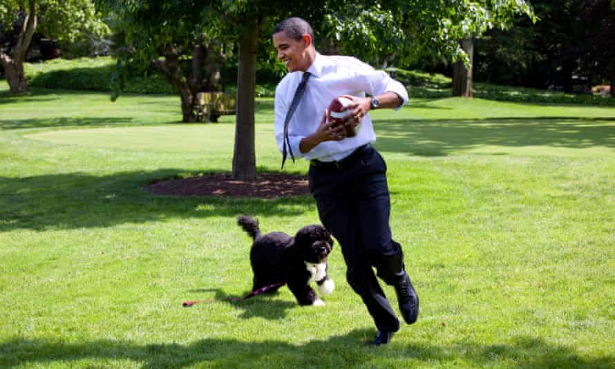 Barack Obama plays with Bo on the South Lawn of the White House in May 2009