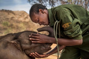 Main competition: Warriors Who Once Feared Elephants Now Protect Them by Ami Vitale, US