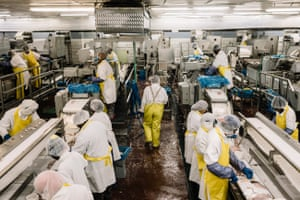 Employees work to process catfish fillets at Consolidated Catfish Producers LLC.