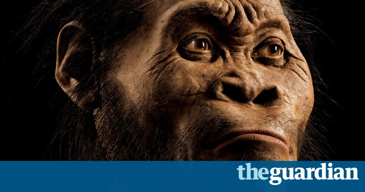 Homo Naledi New Species Of Ancient Human Discovered Claim - 17 satirical illustrations that show humans havent really evolved