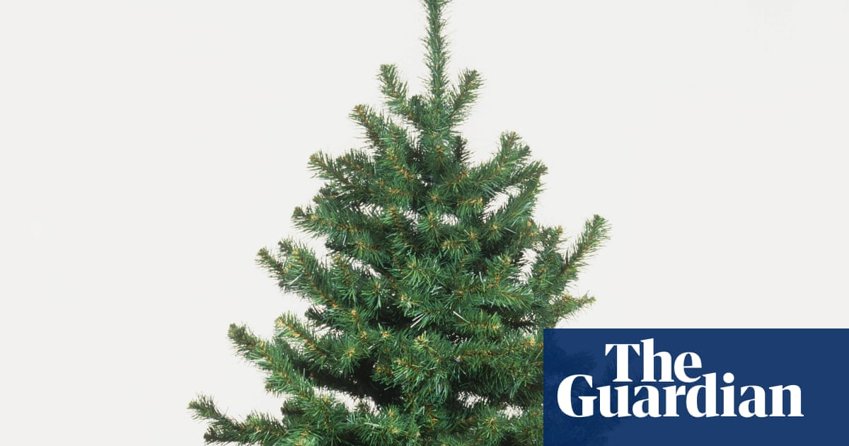 why did aldi sell me a christmas tree i couldn 39 t carry. Black Bedroom Furniture Sets. Home Design Ideas