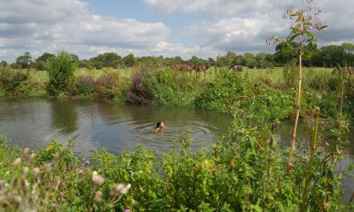 Elizabeth-Jane Burnett (who usually swims in the Dart) takes a dip in the Ouse, East Sussex.