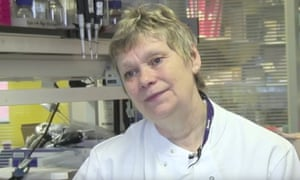 Professor Frances Balkwill says her theory about the development of tumours is controversial.