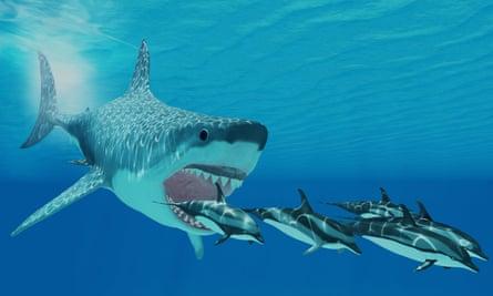 Gambar komputerisasi megalodon Otodus yang berenang mengejar lumba-lumba.