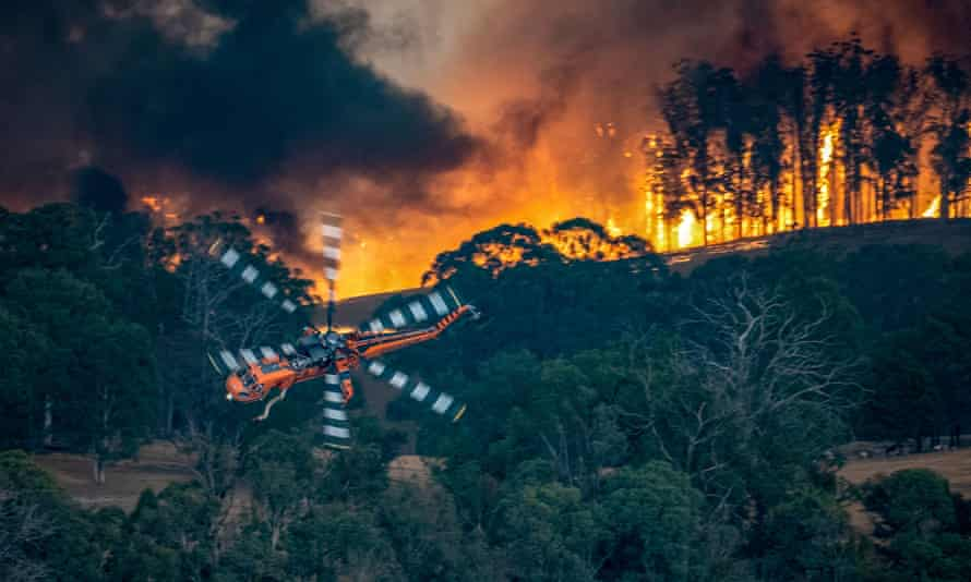 The bushfires have devastated some of Australia's key tourism areas, including East Gippsland in Victoria