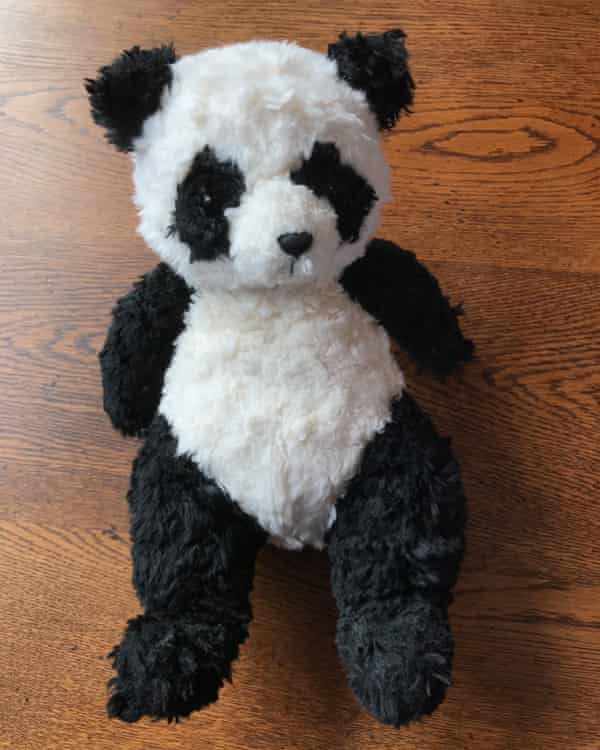Pinged back … the lost panda.